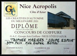 diplome coiffure mariee